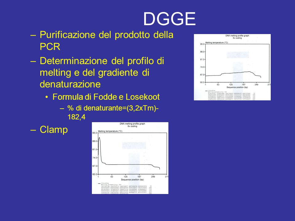 DGGE Purificazione del prodotto della PCR