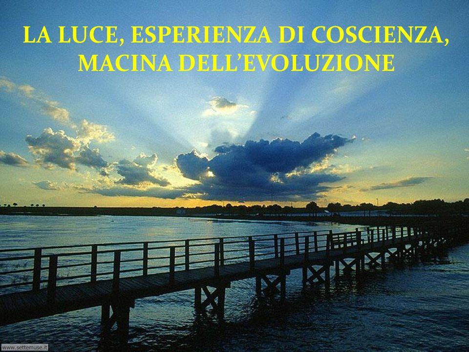 LA LUCE, ESPERIENZA DI COSCIENZA, MACINA DELL'EVOLUZIONE