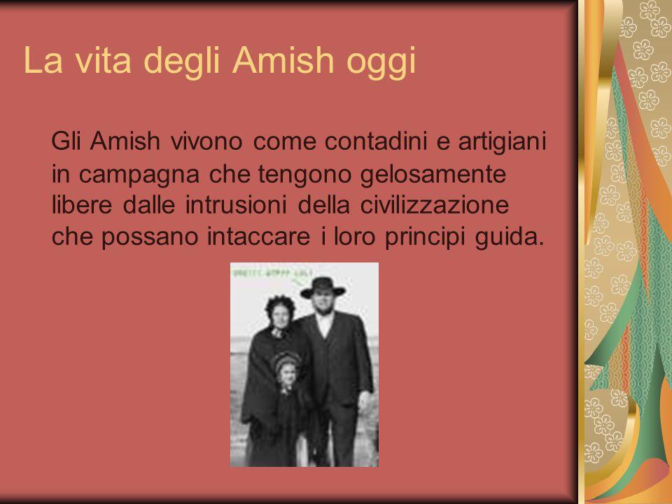 La vita degli Amish oggi