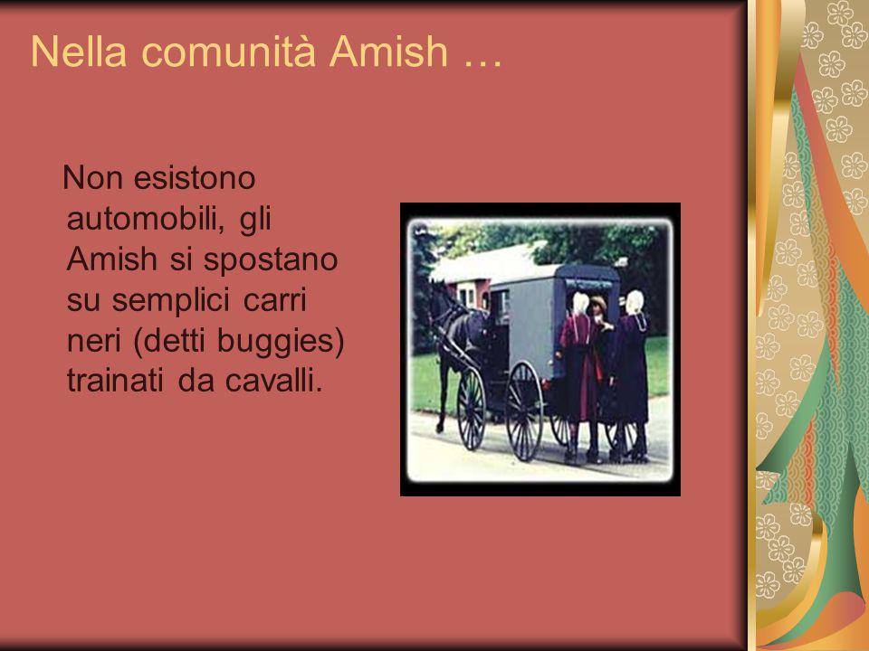 Nella comunità Amish … Non esistono automobili, gli Amish si spostano su semplici carri neri (detti buggies) trainati da cavalli.