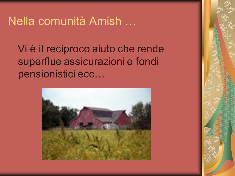 Nella comunità Amish … Vi è il reciproco aiuto che rende superflue assicurazioni e fondi pensionistici ecc…