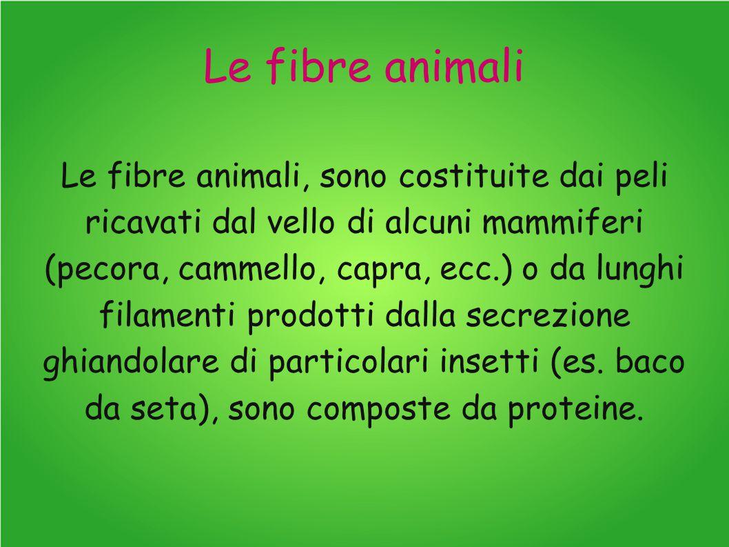 Le fibre animali