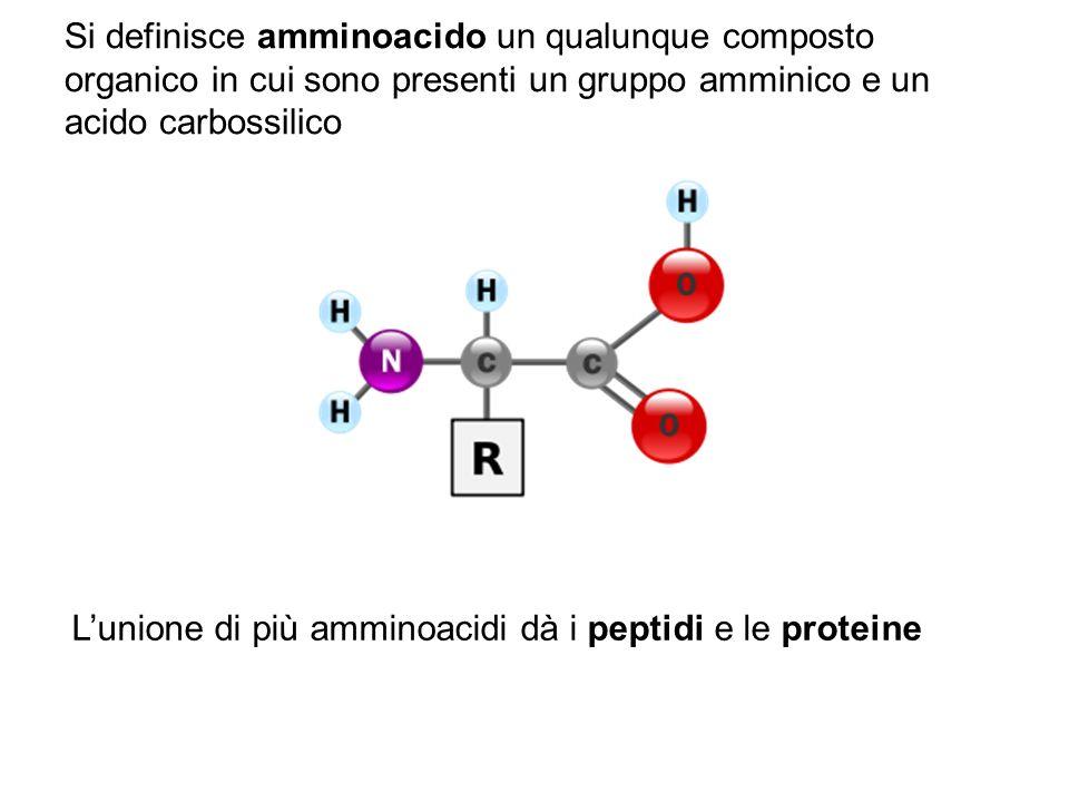 Si definisce amminoacido un qualunque composto organico in cui sono presenti un gruppo amminico e un acido carbossilico