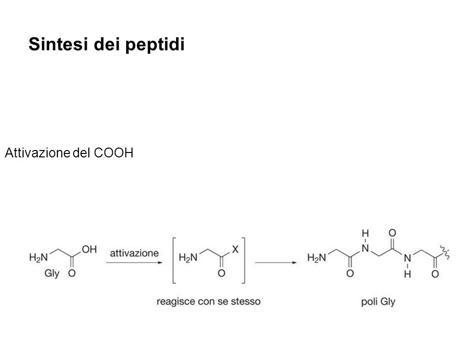 Sintesi dei peptidi Attivazione del COOH