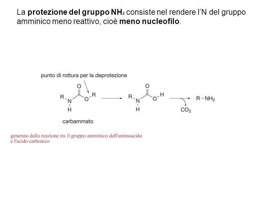 La protezione del gruppo NH2 consiste nel rendere l'N del gruppo amminico meno reattivo, cioè meno nucleofilo.