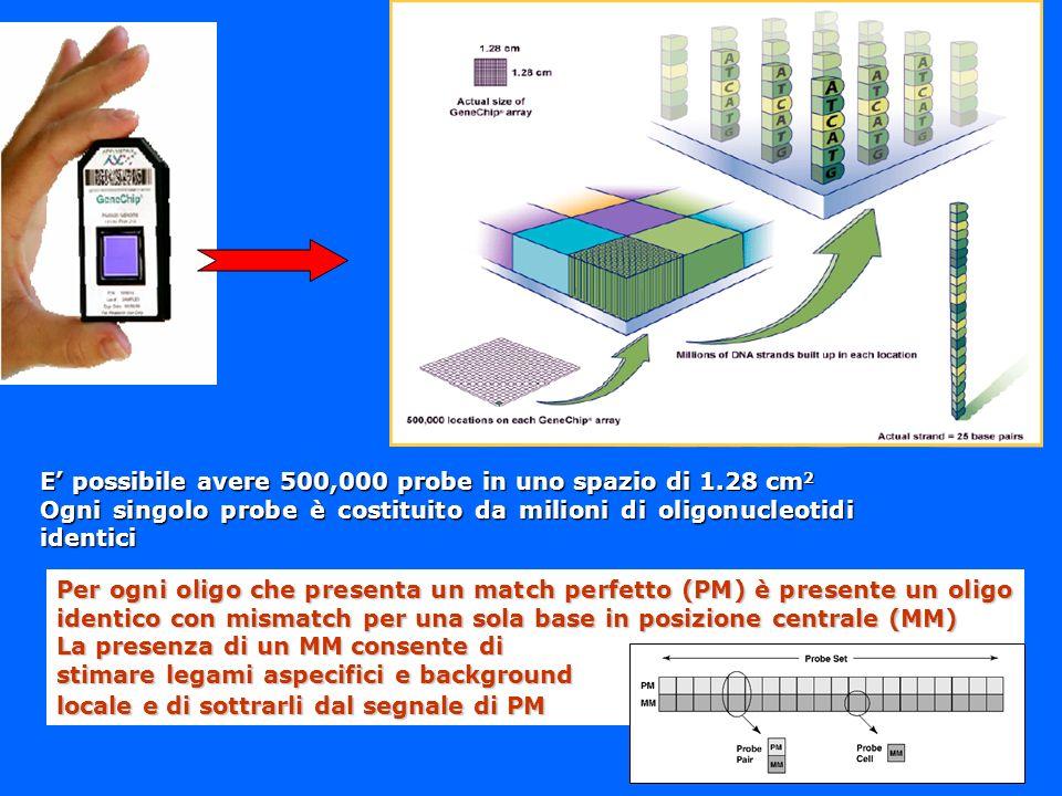 E' possibile avere 500,000 probe in uno spazio di 1.28 cm2