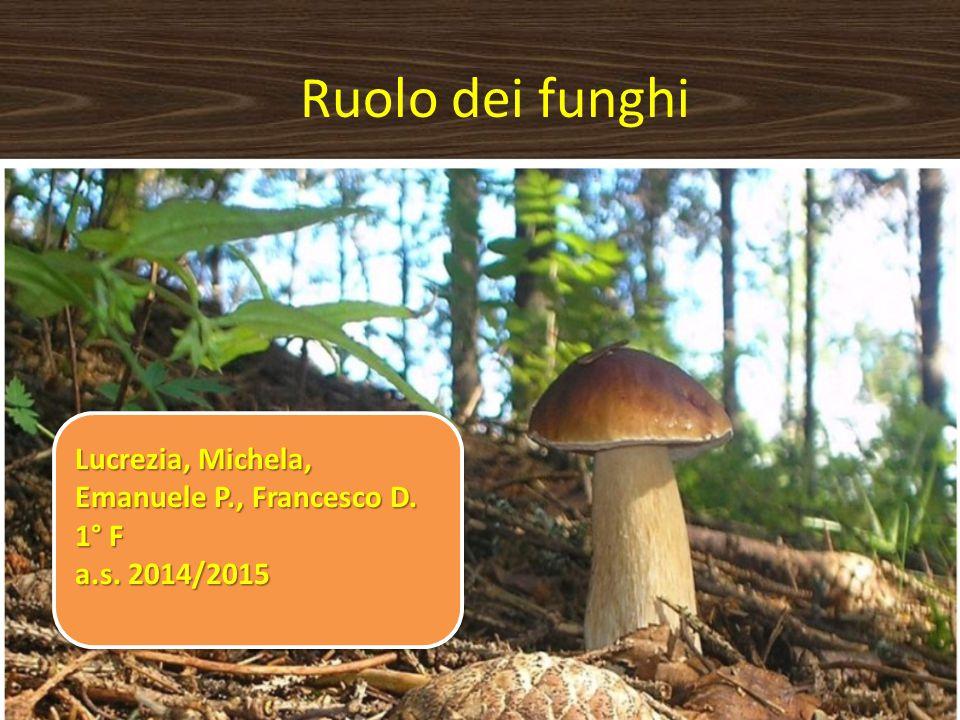 Ruolo dei funghi Lucrezia, Michela, Emanuele P., Francesco D. 1° F