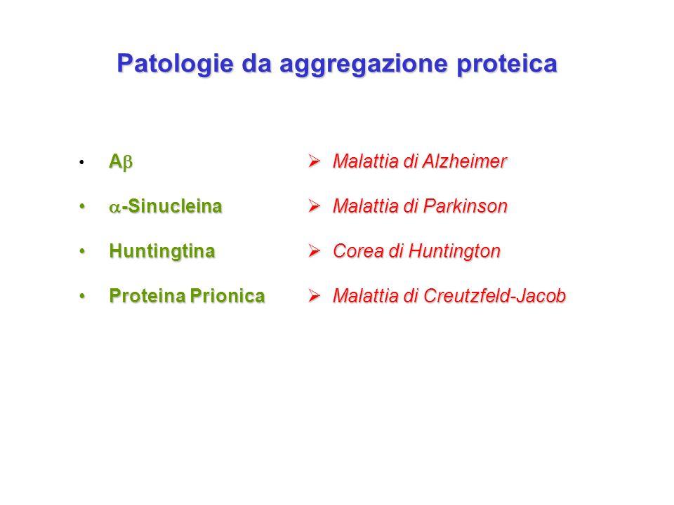 Patologie da aggregazione proteica