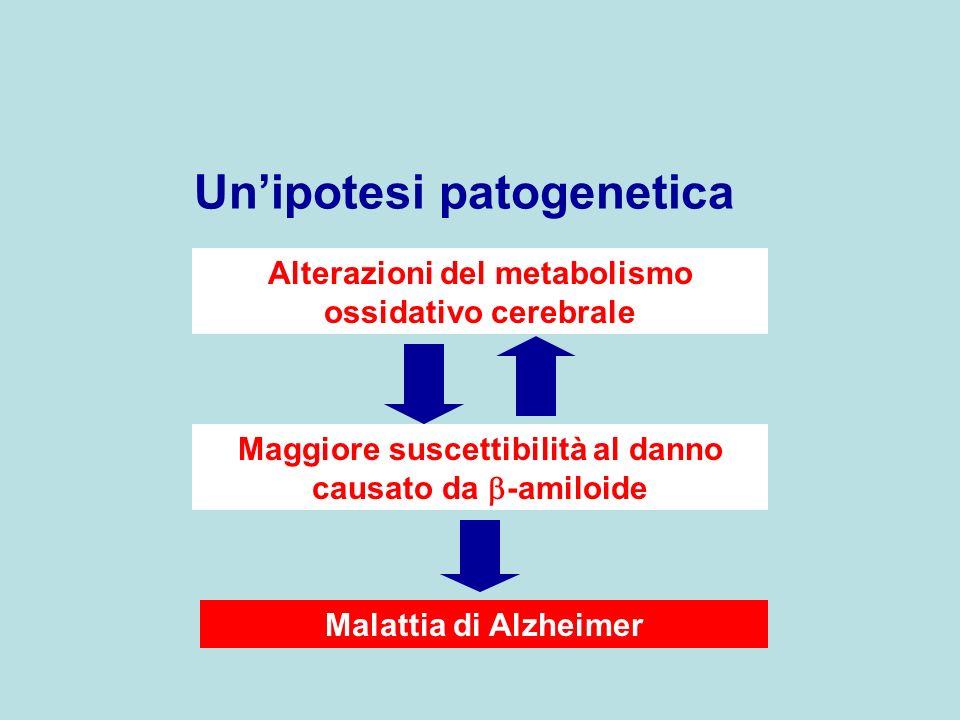 Un'ipotesi patogenetica