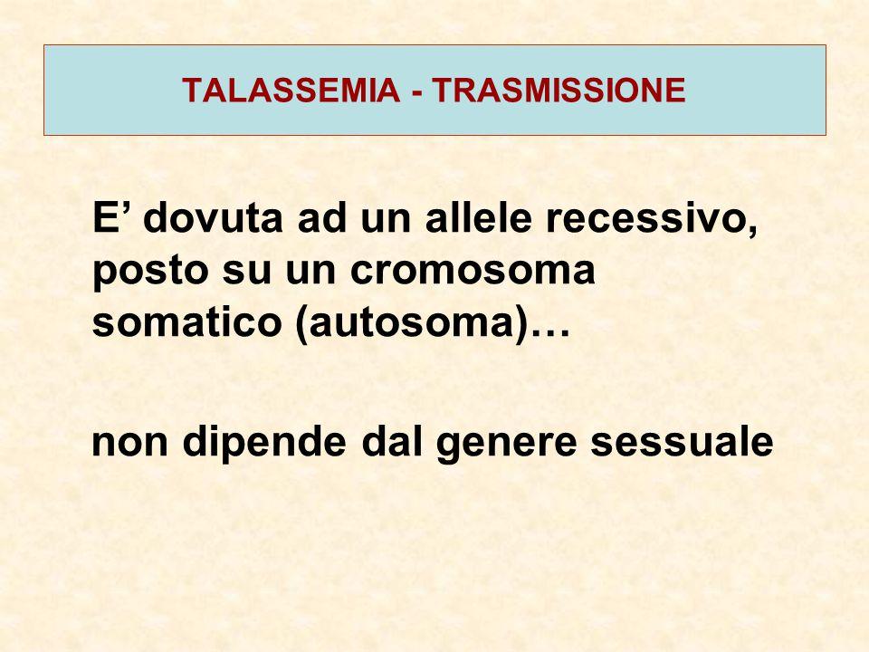 TALASSEMIA - TRASMISSIONE