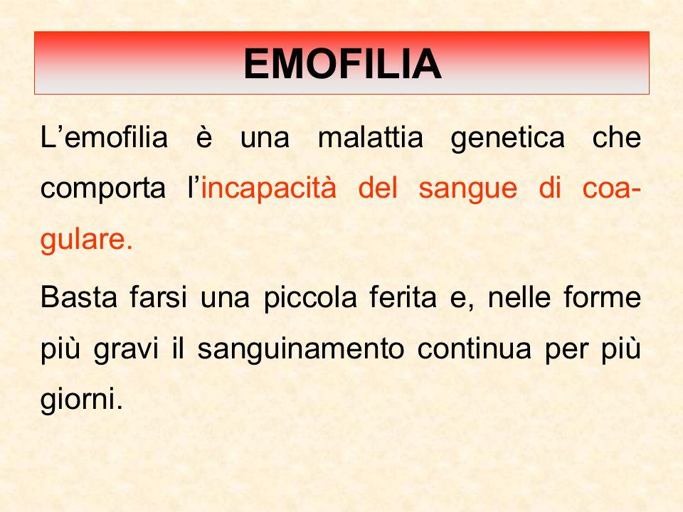 EMOFILIA L'emofilia è una malattia genetica che comporta l'incapacità del sangue di coa-gulare.