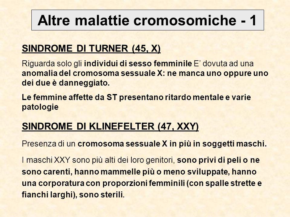 Altre malattie cromosomiche - 1