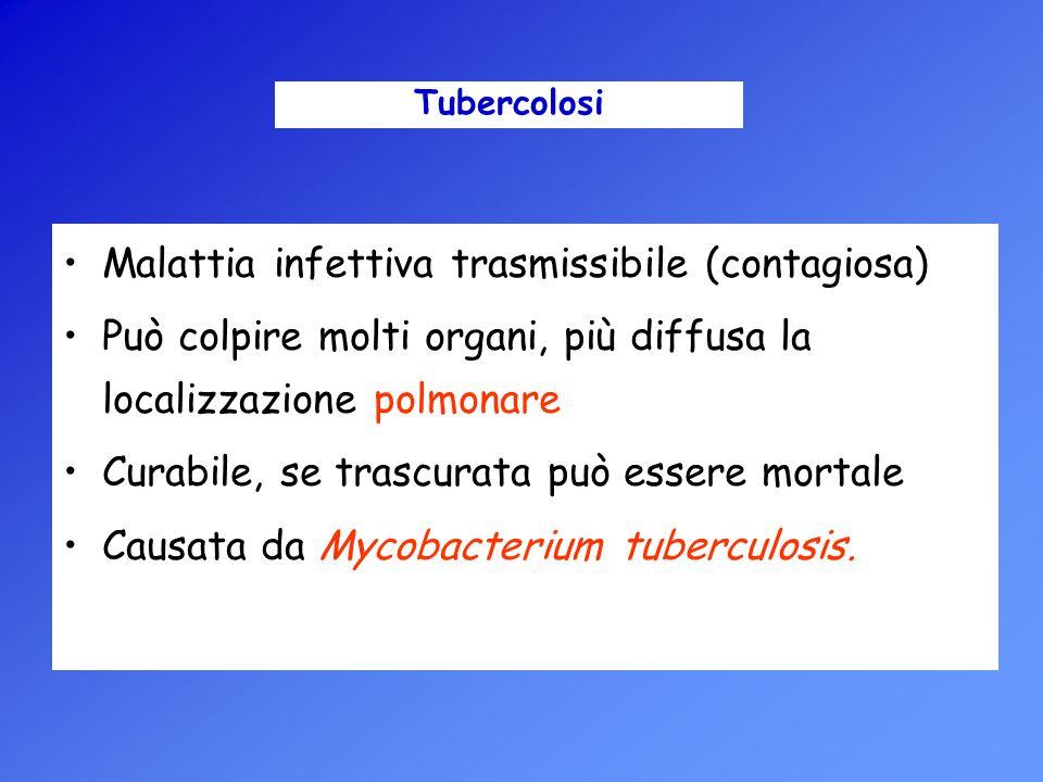Malattia infettiva trasmissibile (contagiosa)