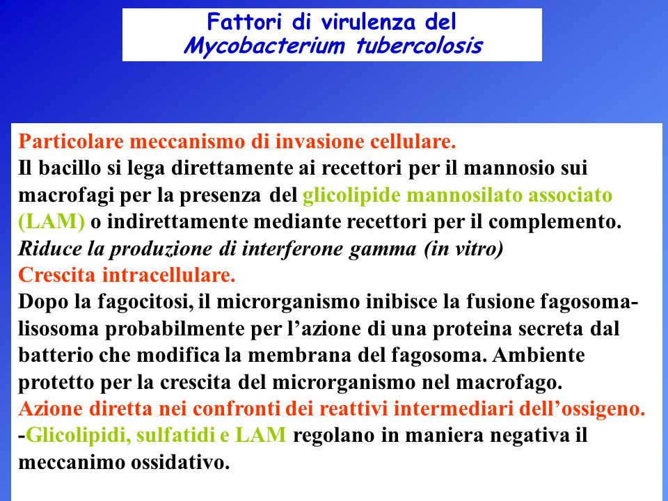 Fattori di virulenza del Mycobacterium tubercolosis