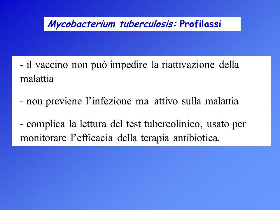 il vaccino non può impedire la riattivazione della malattia