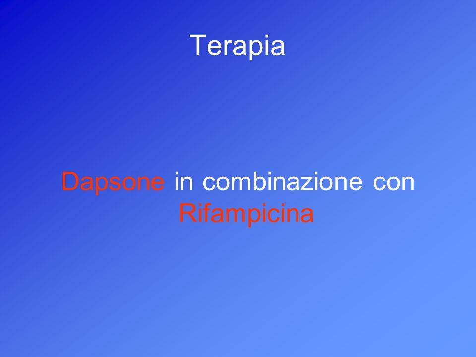 Dapsone in combinazione con Rifampicina