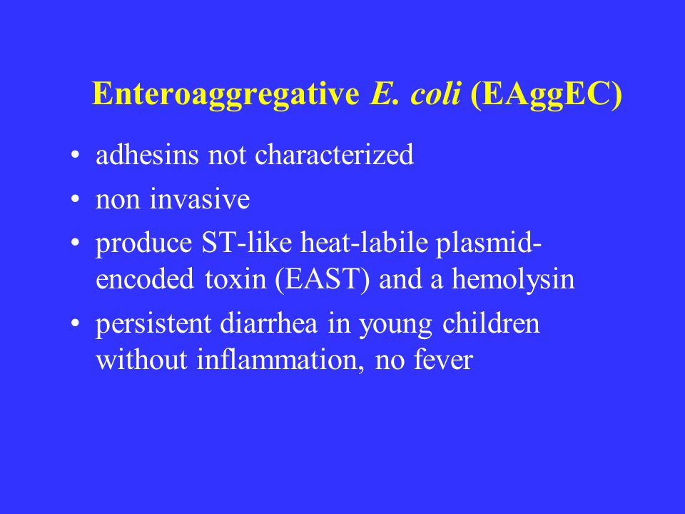 Enteroaggregative E. coli (EAggEC)