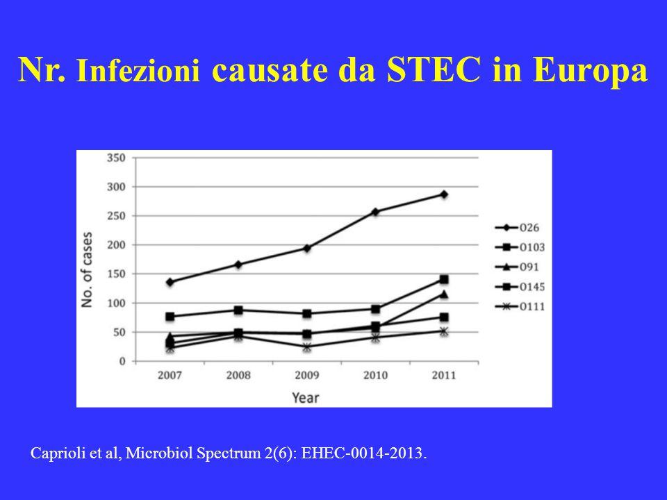 Nr. Infezioni causate da STEC in Europa