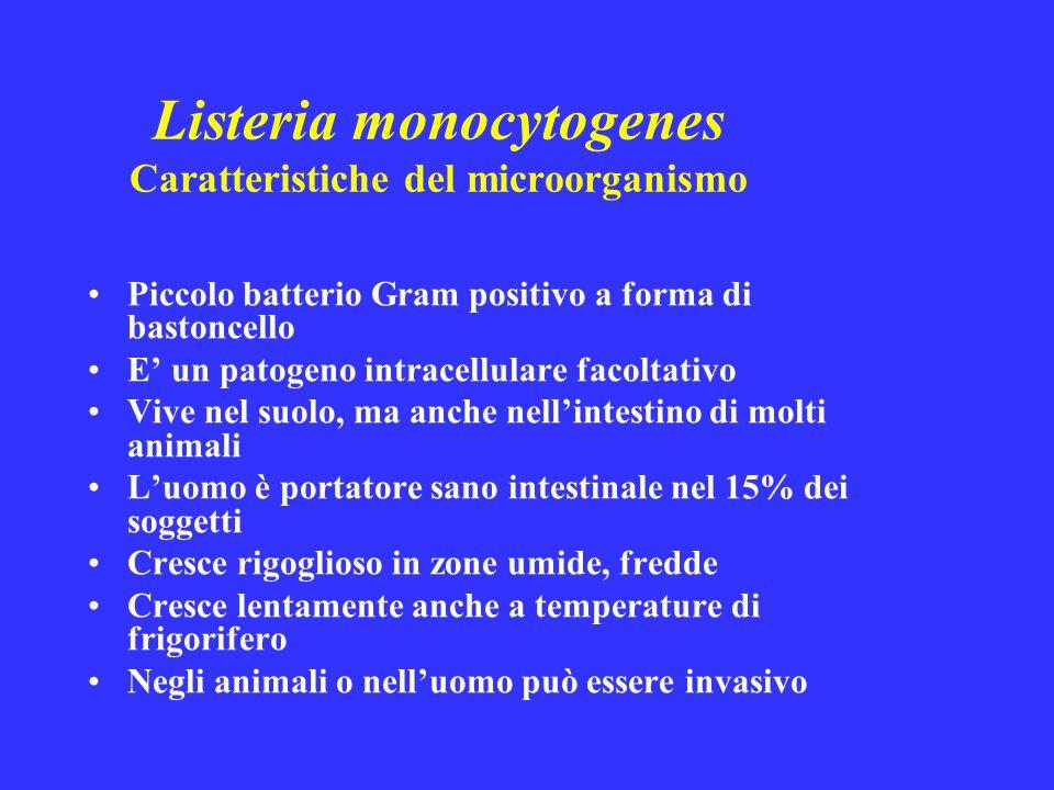Listeria monocytogenes Caratteristiche del microorganismo