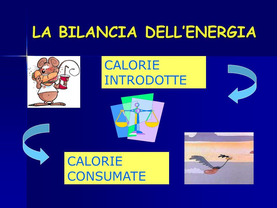 LA BILANCIA DELL'ENERGIA