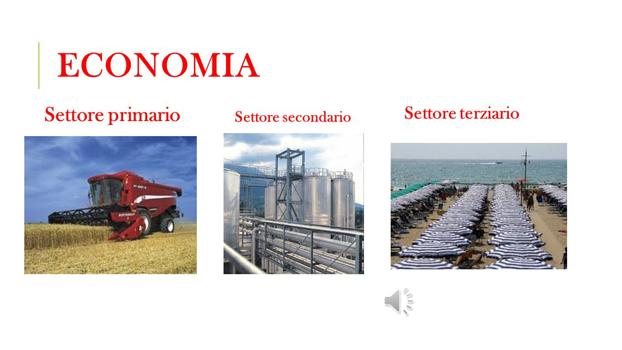 Economia Settore primario Settore terziario Settore secondario