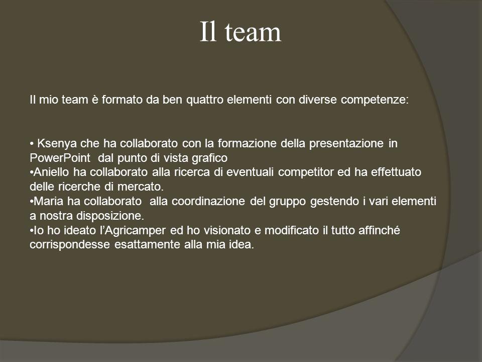 Il team Il mio team è formato da ben quattro elementi con diverse competenze:
