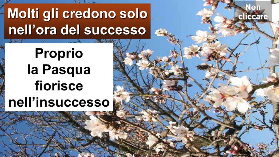Molti gli credono solo nell'ora del successo