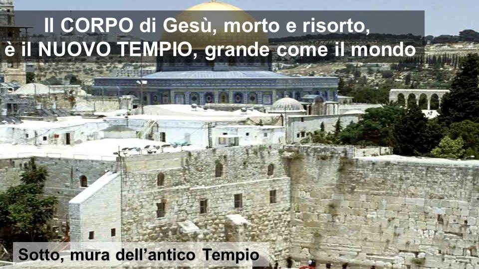 Il CORPO di Gesù, morto e risorto, è il NUOVO TEMPIO, grande come il mondo