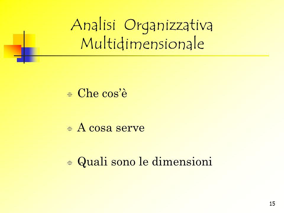 Analisi Organizzativa Multidimensionale
