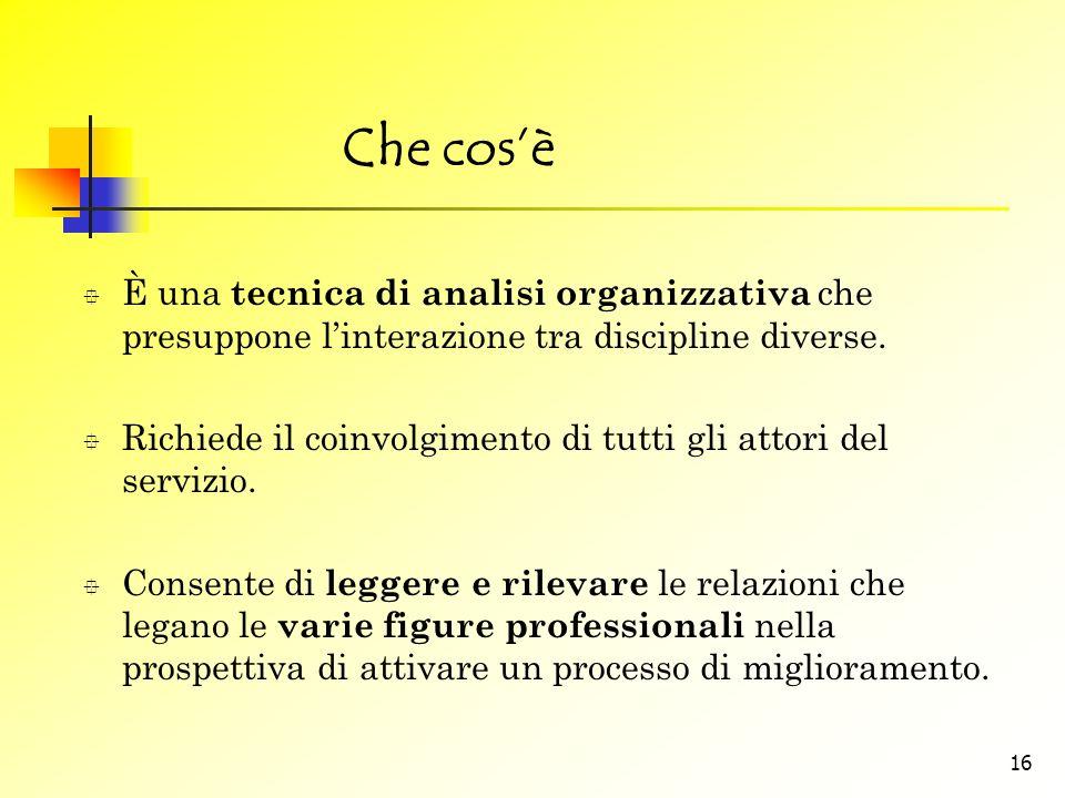 Che cos'è È una tecnica di analisi organizzativa che presuppone l'interazione tra discipline diverse.