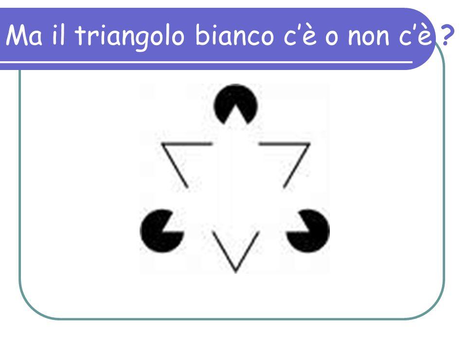 Ma il triangolo bianco c'è o non c'è