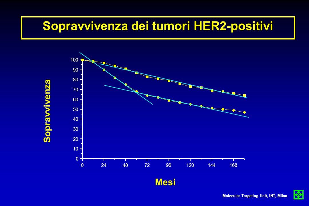 Sopravvivenza dei tumori HER2-positivi