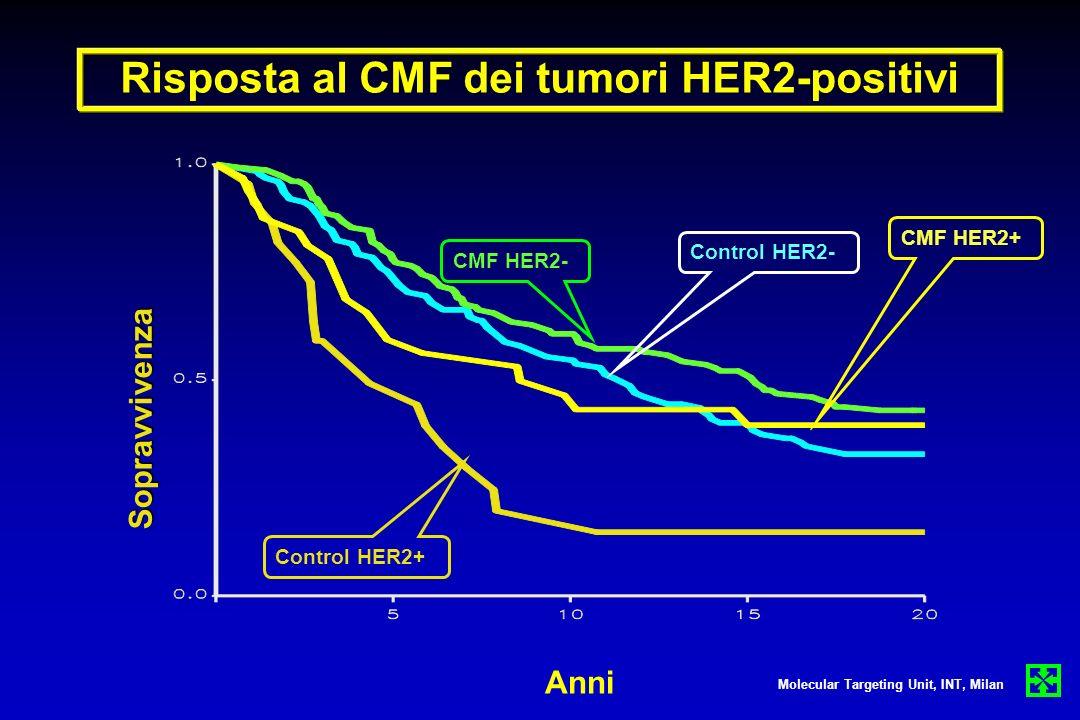Risposta al CMF dei tumori HER2-positivi