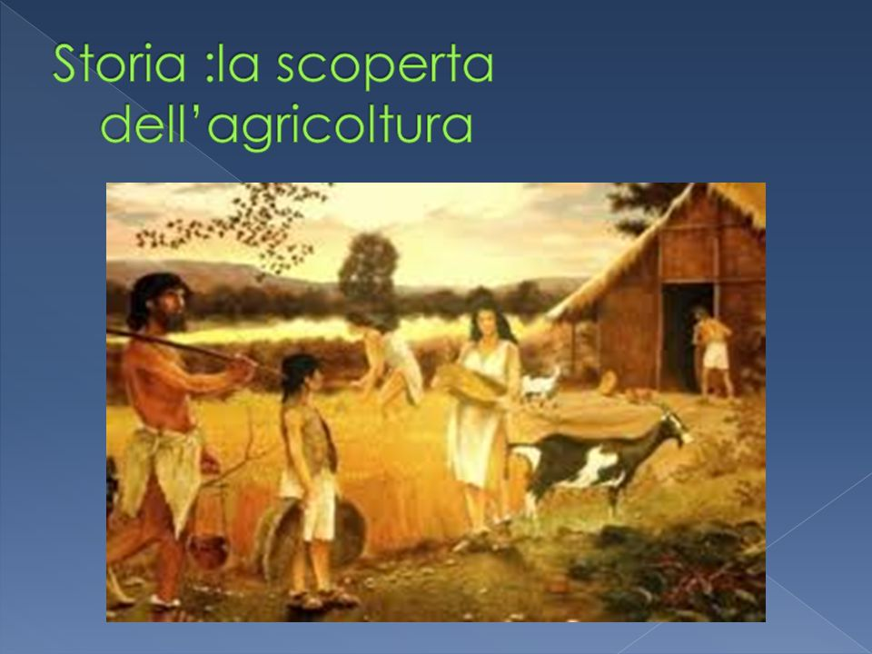 Storia :la scoperta dell'agricoltura