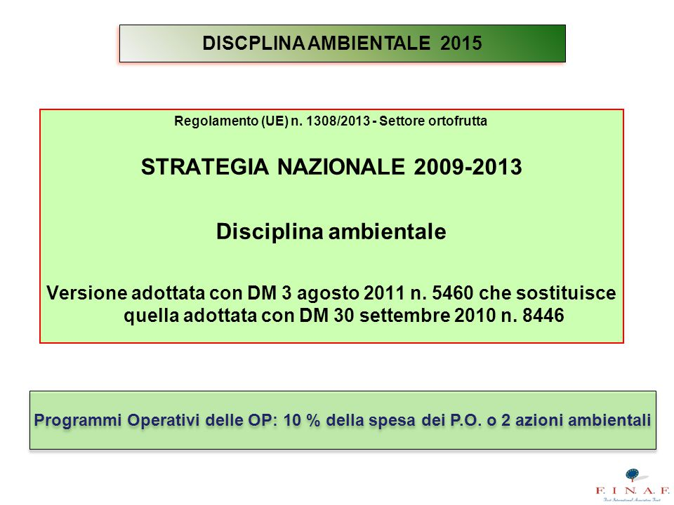 STRATEGIA NAZIONALE 2009-2013 Disciplina ambientale