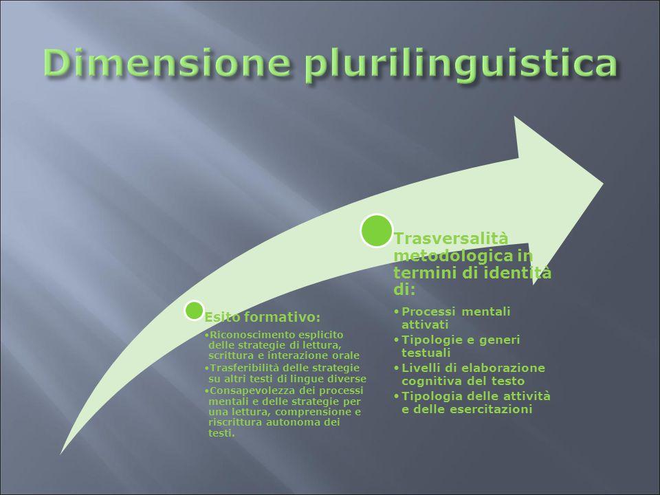 Dimensione plurilinguistica