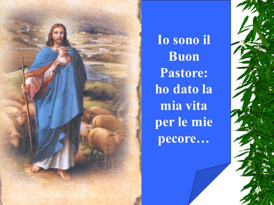 Io sono il Buon Pastore: ho dato la mia vita per le mie pecore…