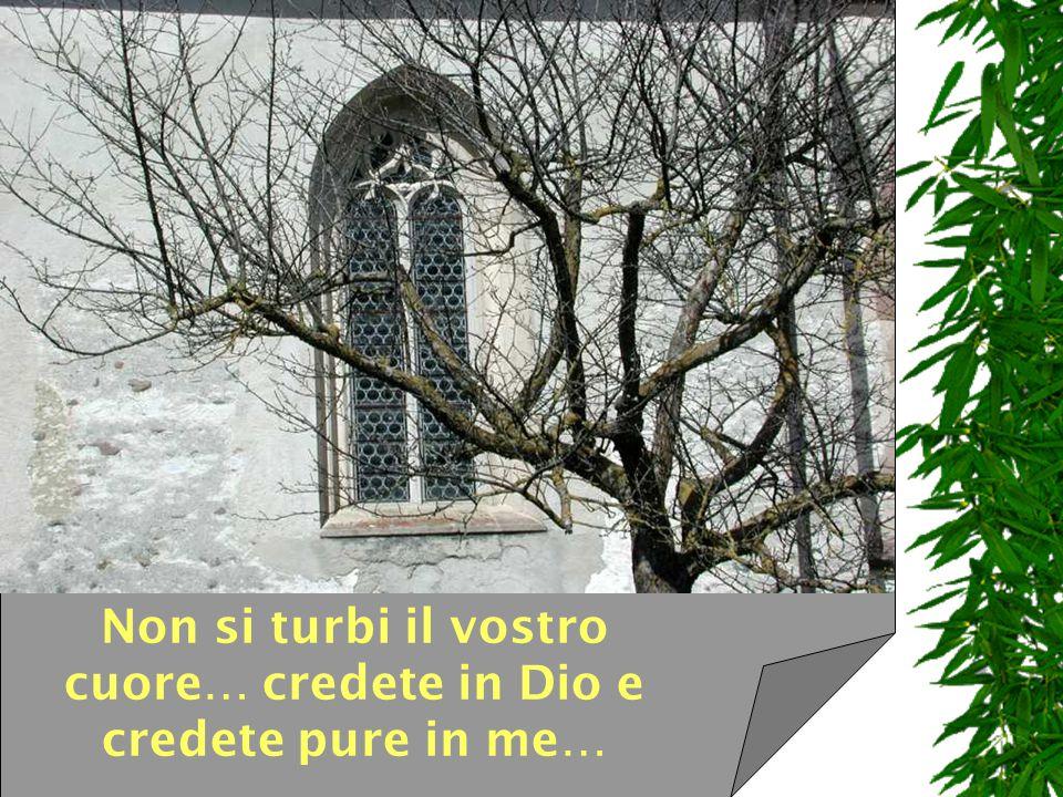 Non si turbi il vostro cuore… credete in Dio e credete pure in me…