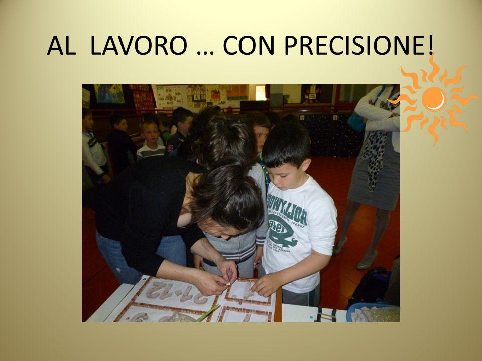 AL LAVORO … CON PRECISIONE!