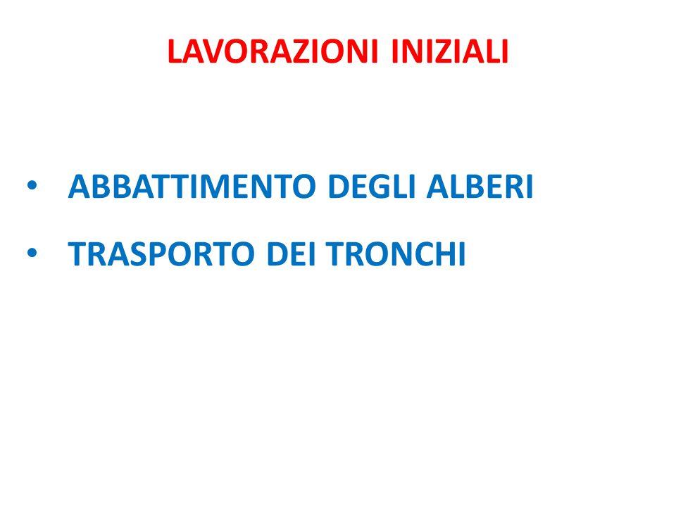 ABBATTIMENTO DEGLI ALBERI TRASPORTO DEI TRONCHI