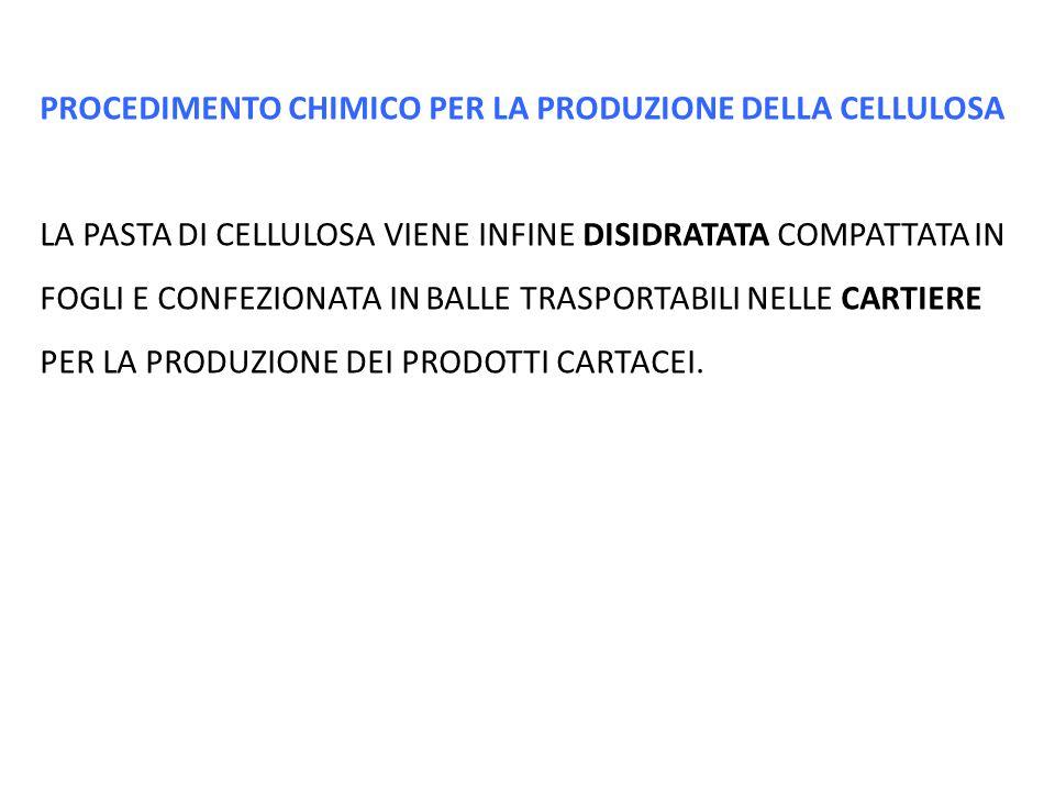 PROCEDIMENTO CHIMICO PER LA PRODUZIONE DELLA CELLULOSA