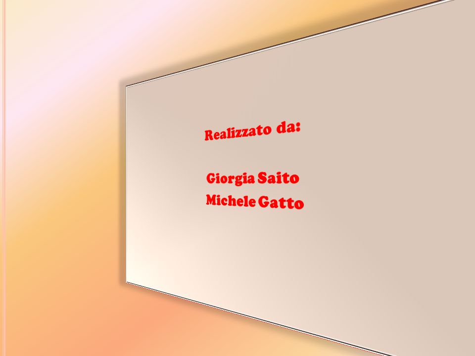 Realizzato da: Giorgia Saito Michele Gatto