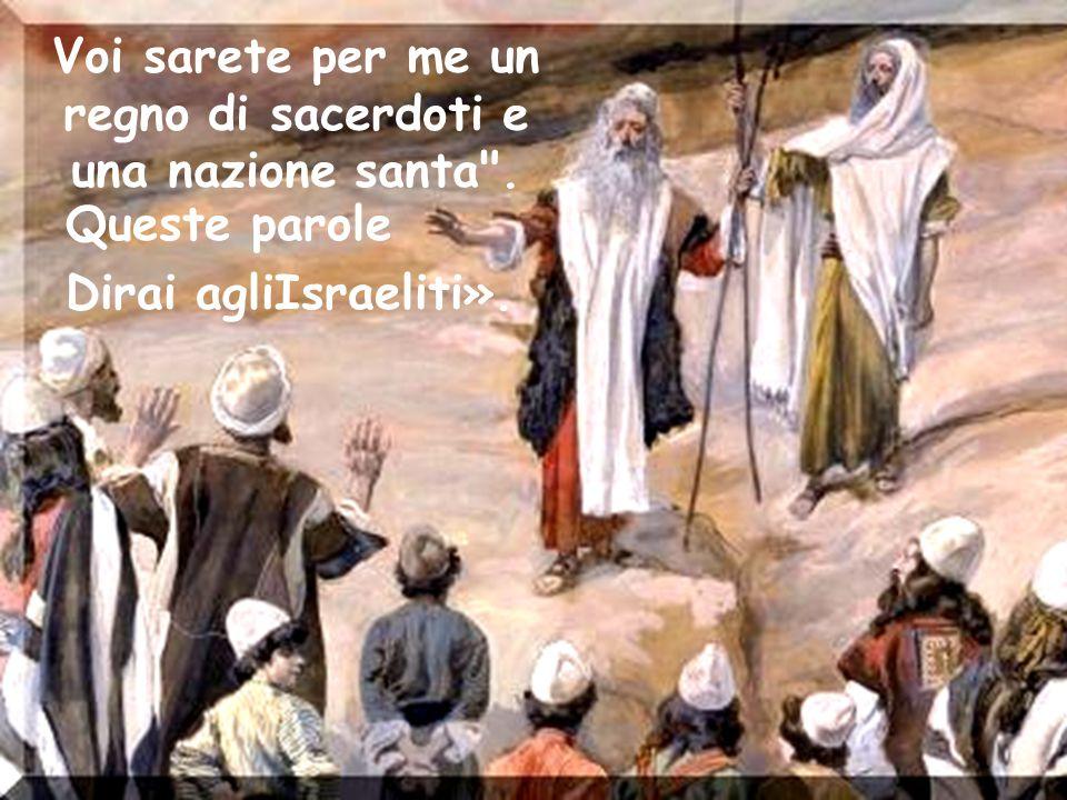 Voi sarete per me un regno di sacerdoti e una nazione santa .