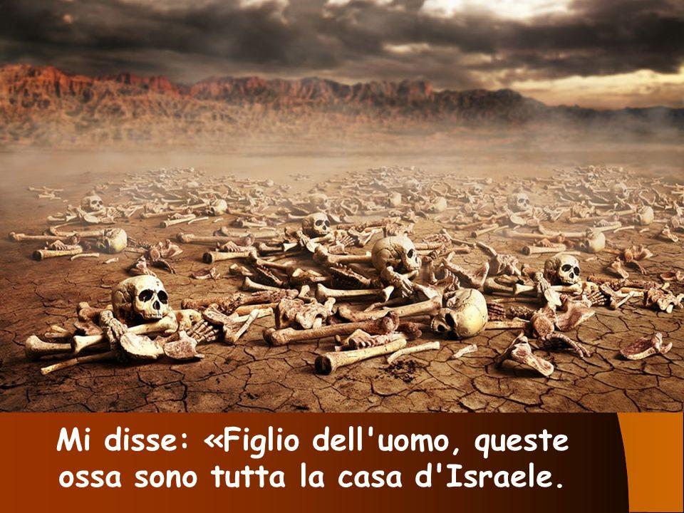 Mi disse: «Figlio dell uomo, queste ossa sono tutta la casa d Israele.