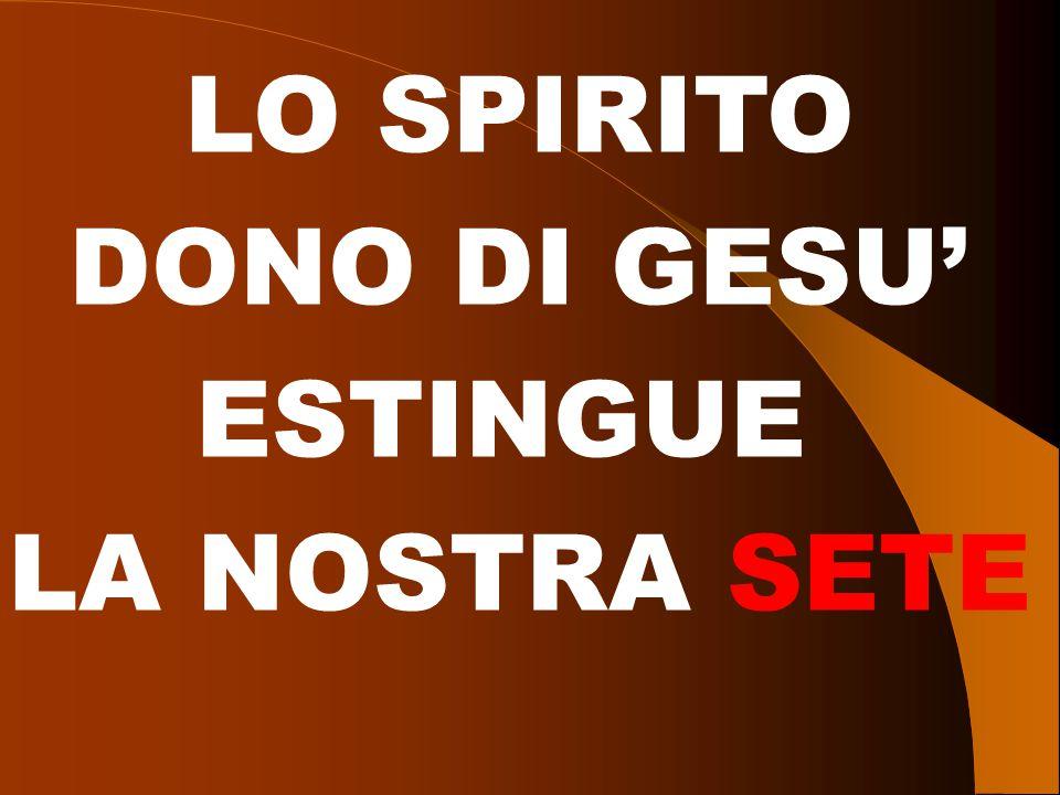 LO SPIRITO DONO DI GESU' ESTINGUE LA NOSTRA SETE