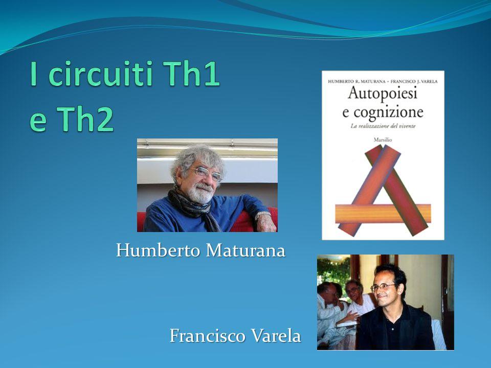 I circuiti Th1 e Th2 Humberto Maturana Francisco Varela