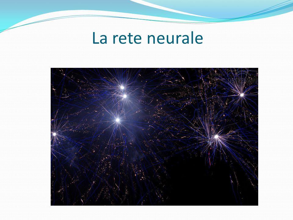 La rete neurale ..