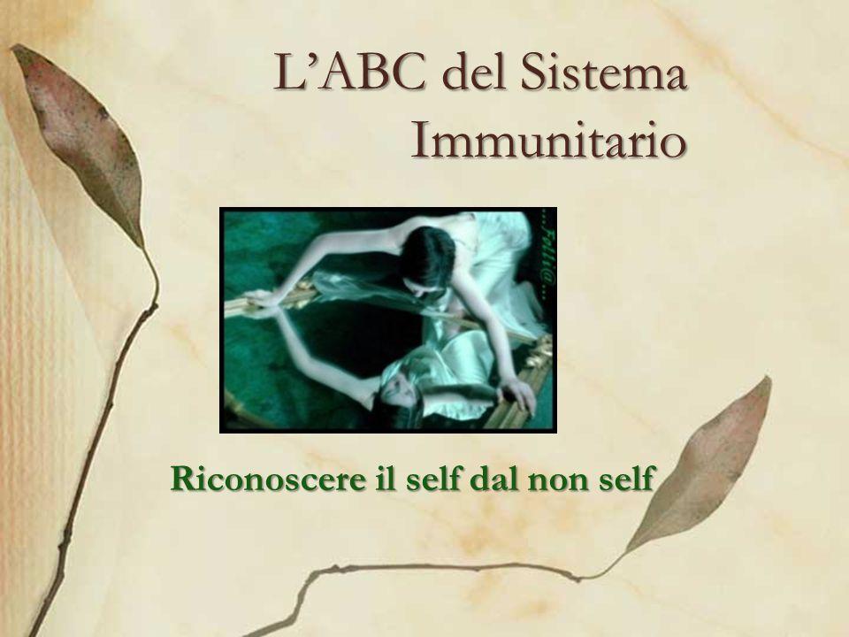 L'ABC del Sistema Immunitario
