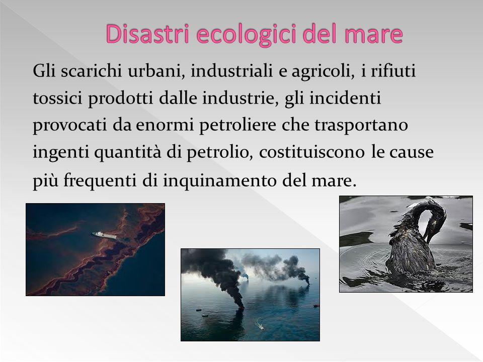 Disastri ecologici del mare