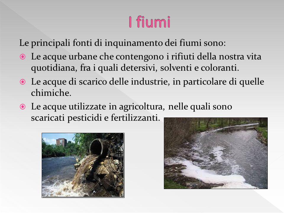 I fiumi Le principali fonti di inquinamento dei fiumi sono: